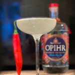 Spiced Gin Sour