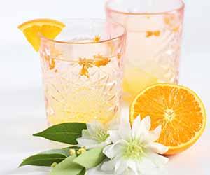 Coastal Orange Blossom Gin Cocktail