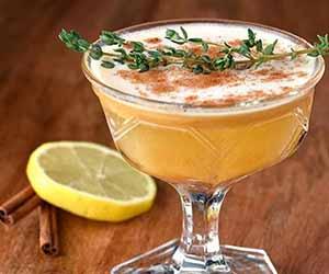Pumpkin Gin Sour